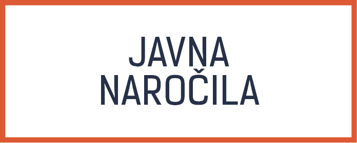 javna narocila light
